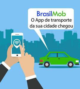 BrasilMOb 270x300