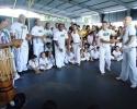 Imagem de Capoeira para combater o bullying