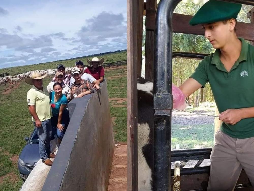 Imagem de Rio Verde recebe um dos cursos de Auxiliar Veterinário mais completos do mercado