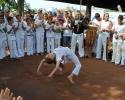 Imagem de Capoeira educando pessoas
