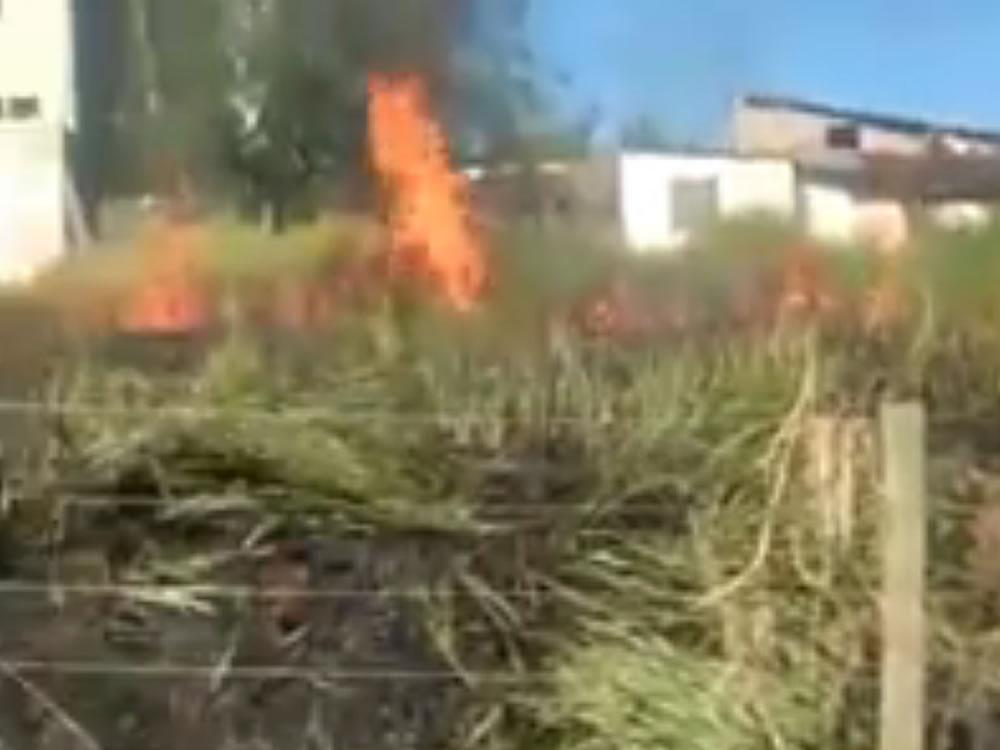 Imagem de Homem detido por atear fogo em lote no Barrinha