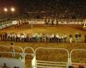 Imagem de Rodeio de Rio Verde mais uma vez é campeão