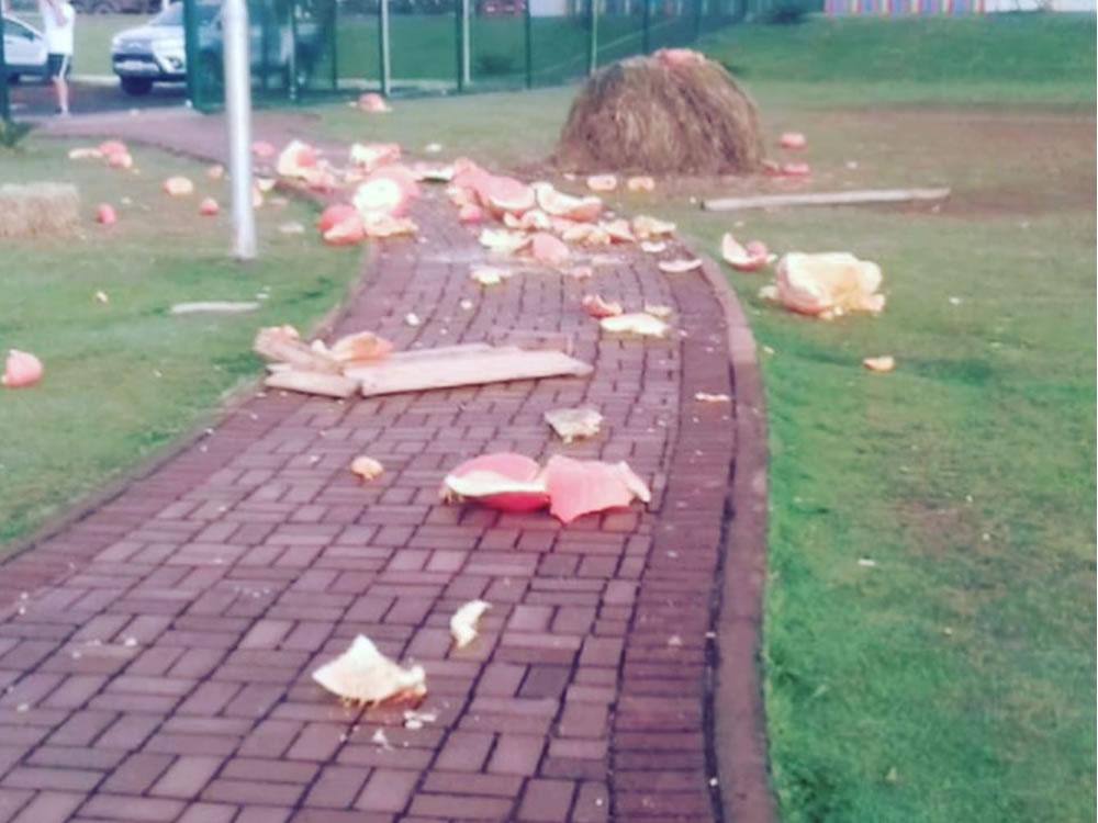 Imagem de Polícia identifica vândalos que depredaram Parque Dona Gercina, em Rio Verde
