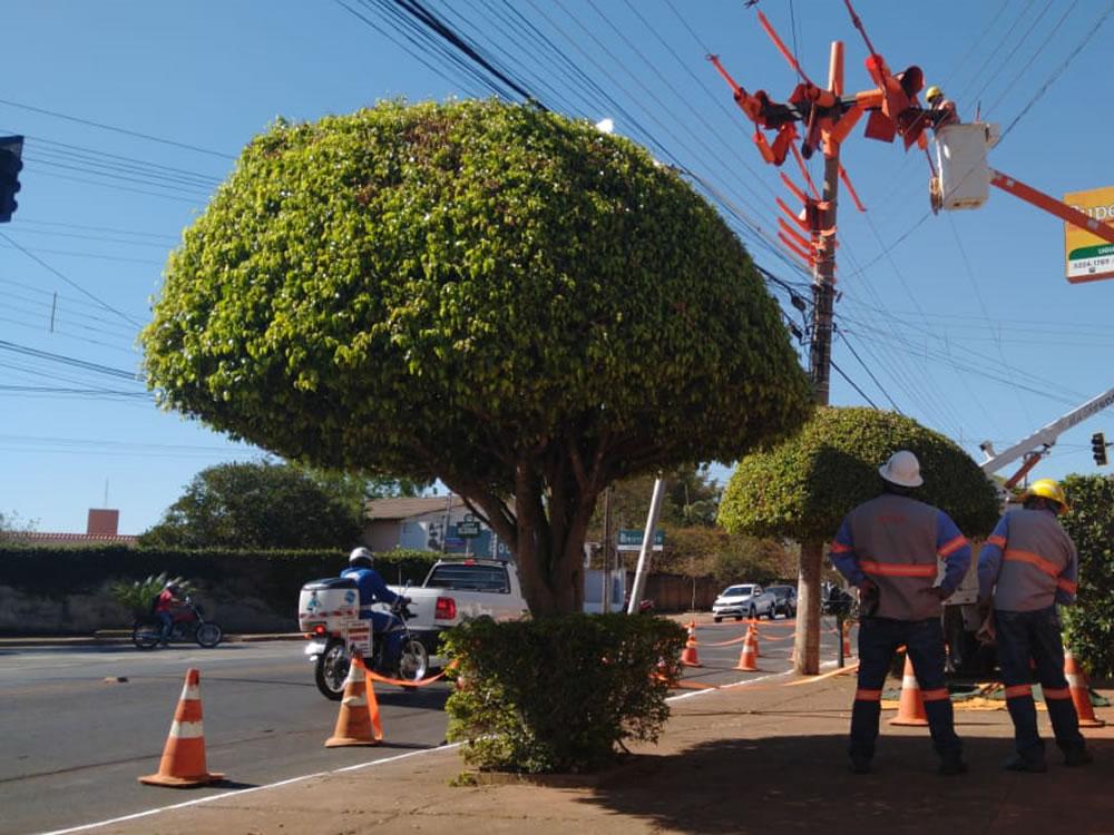 Imagem de Enel Distribuição Goiás realiza mutirão de ações preventivas na rede elétrica de Rio Verde