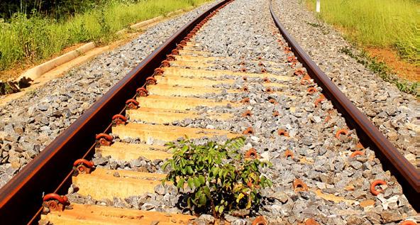Imagem de Leilão da Ferrovia Norte-Sul ocorre no final de março