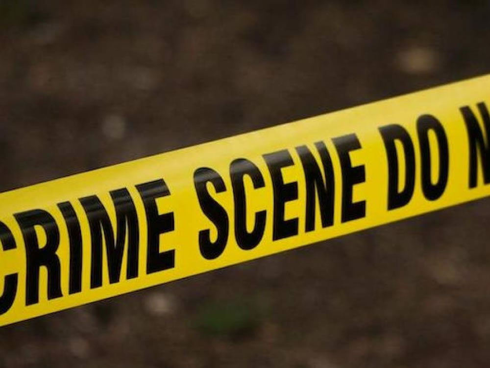 Imagem de Polícia de NY usa software com inteligência artificial para investigar crimes