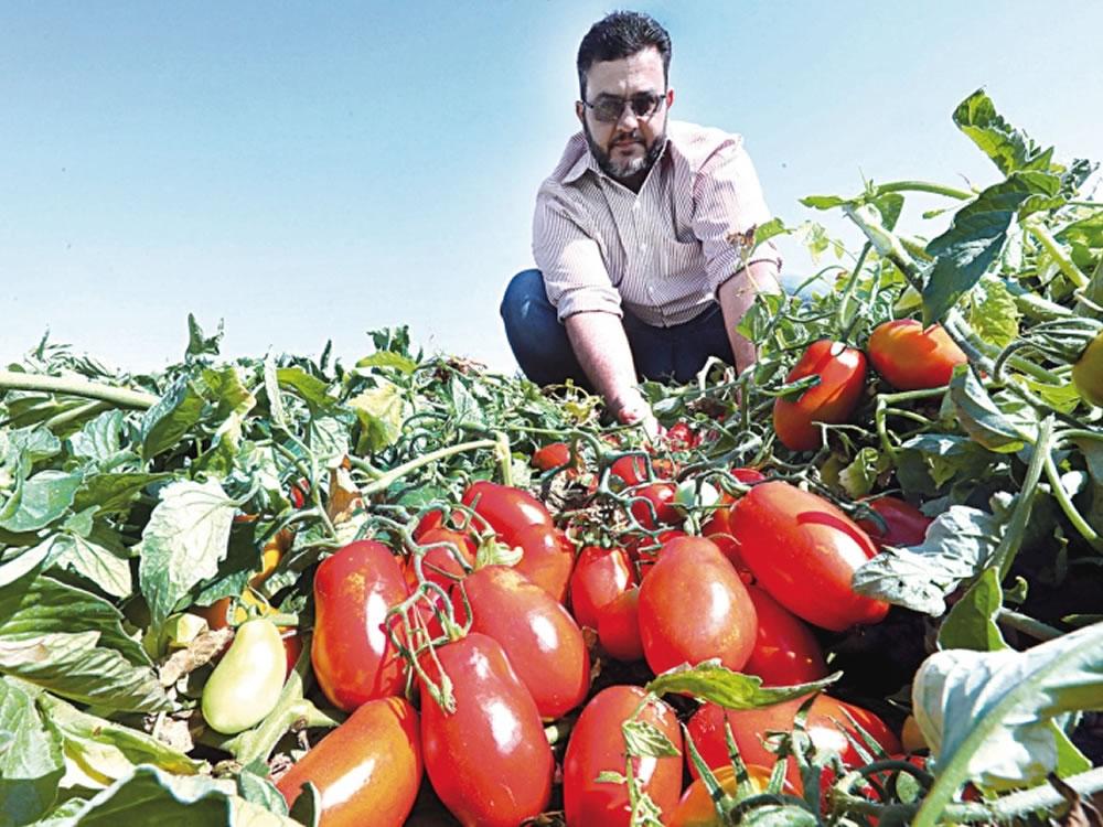 Imagem de Goiás é protagonista no agro