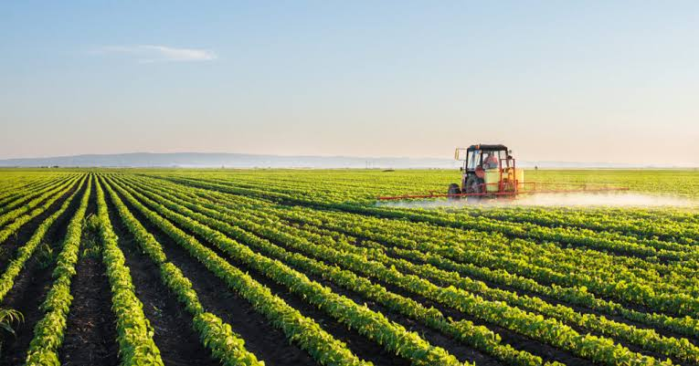 Imagem de Governo de Goiás investe R$ 15 milhões em centro de excelência de agricultura exponencial