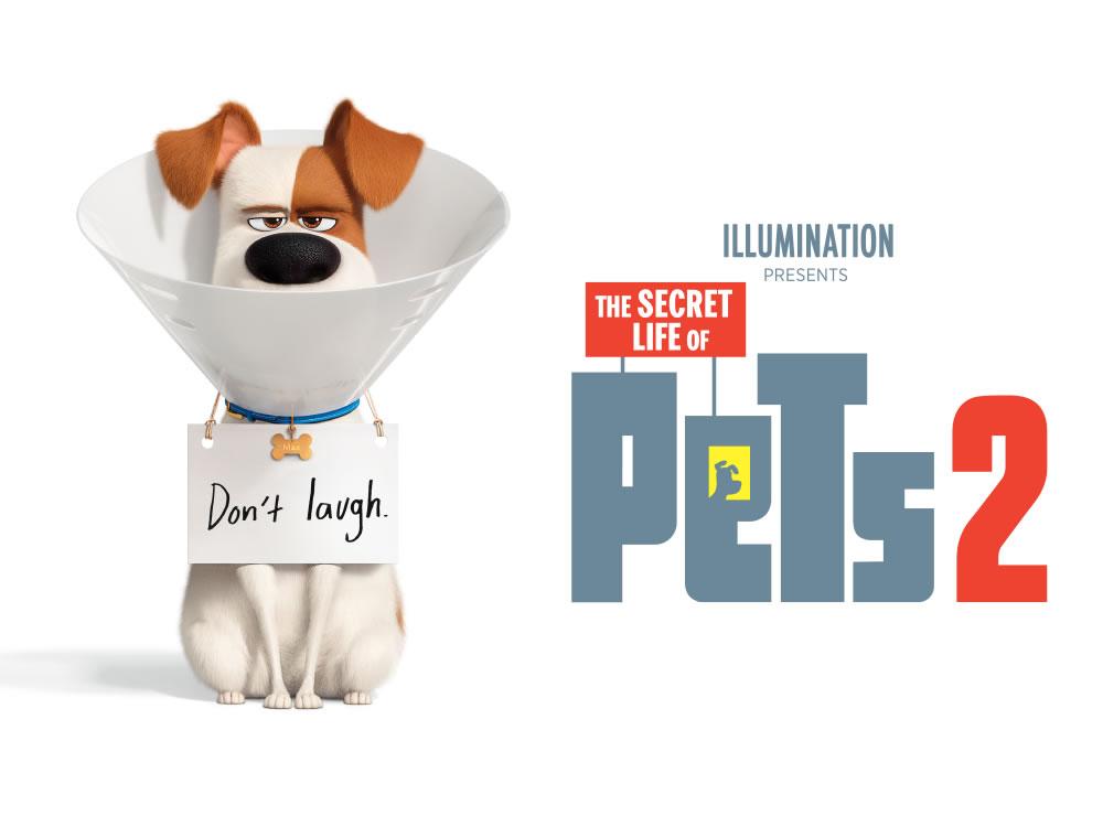 Imagem de Em cartaz: Pets – A vida secreta dos bichos 2