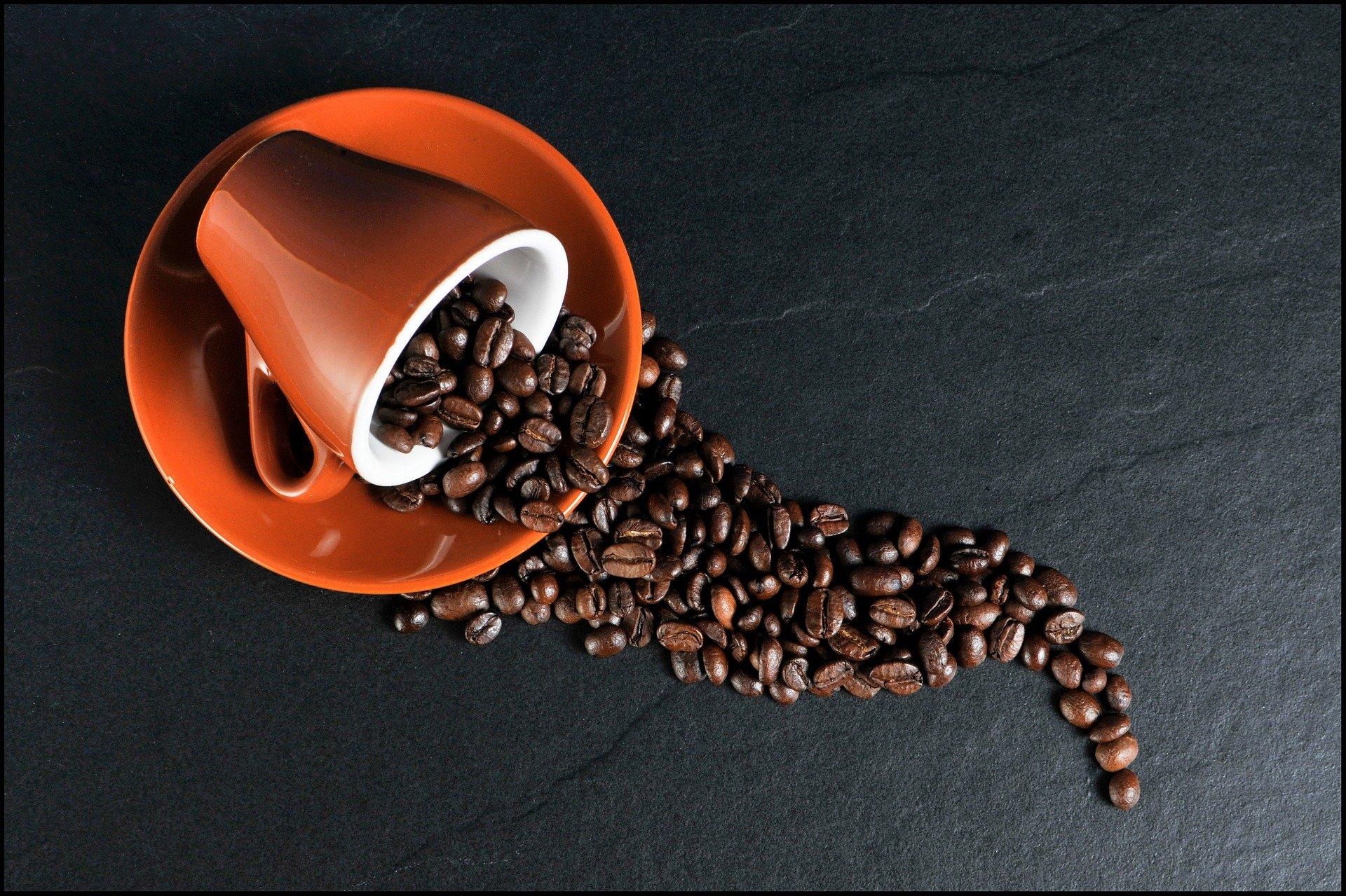 Imagem de Café: curiosidades sobre essa bebida