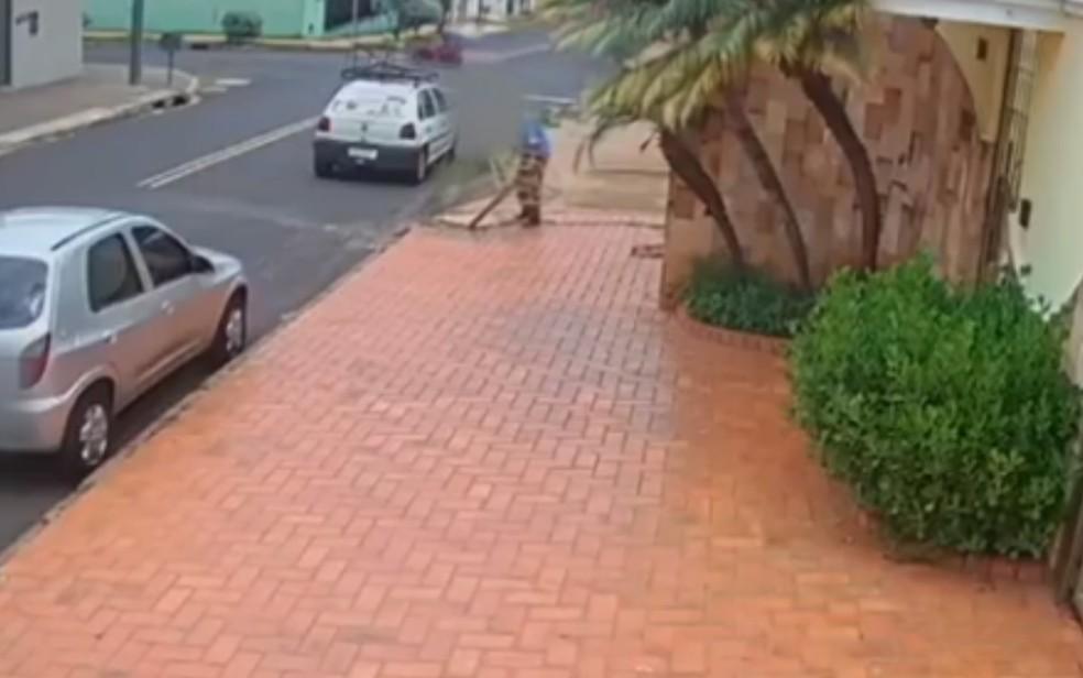 Imagem de Homem furta lixeira presa ao chão em Rio Verde